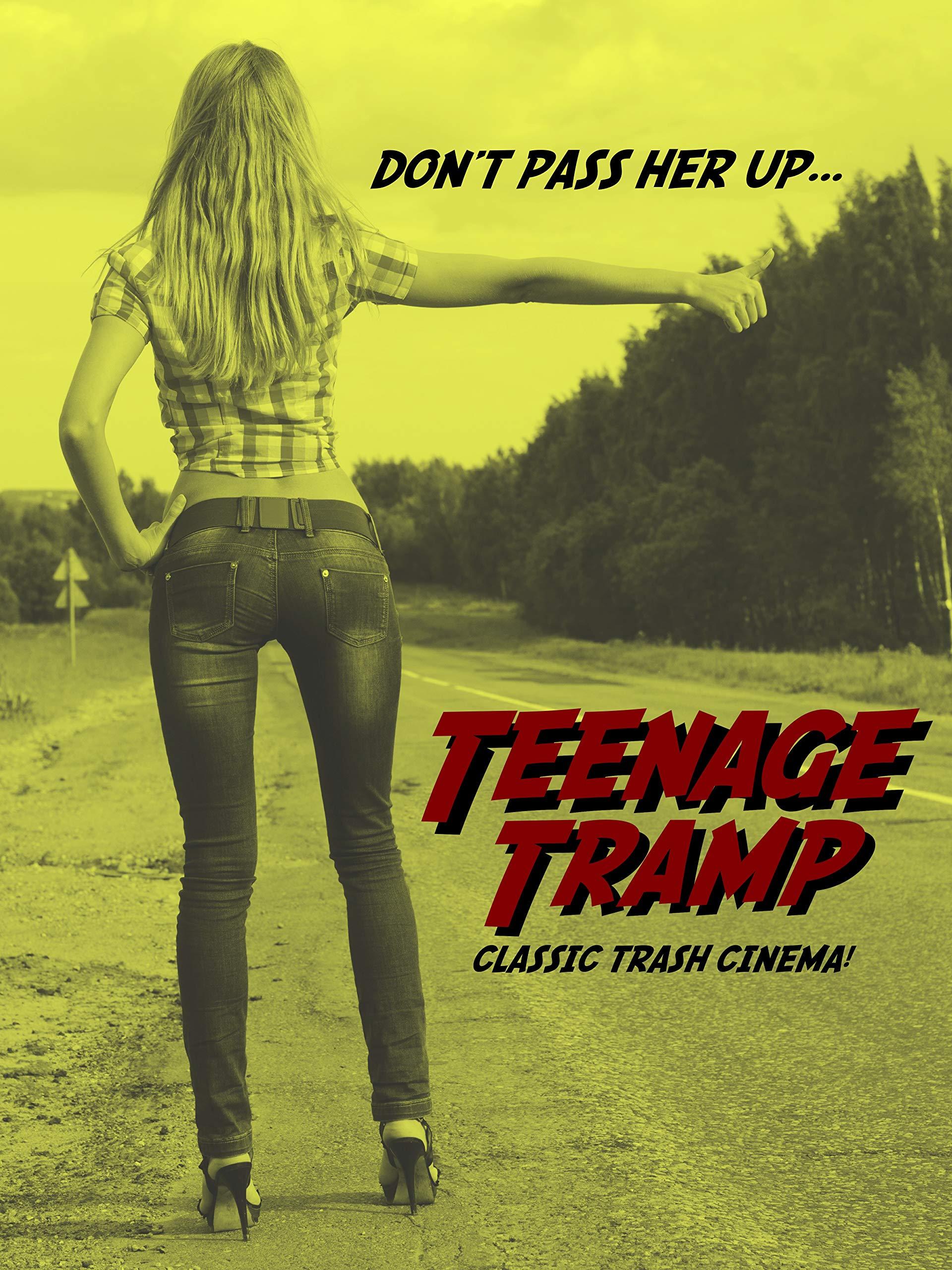 1973 Teenage Tramp Movie Poster