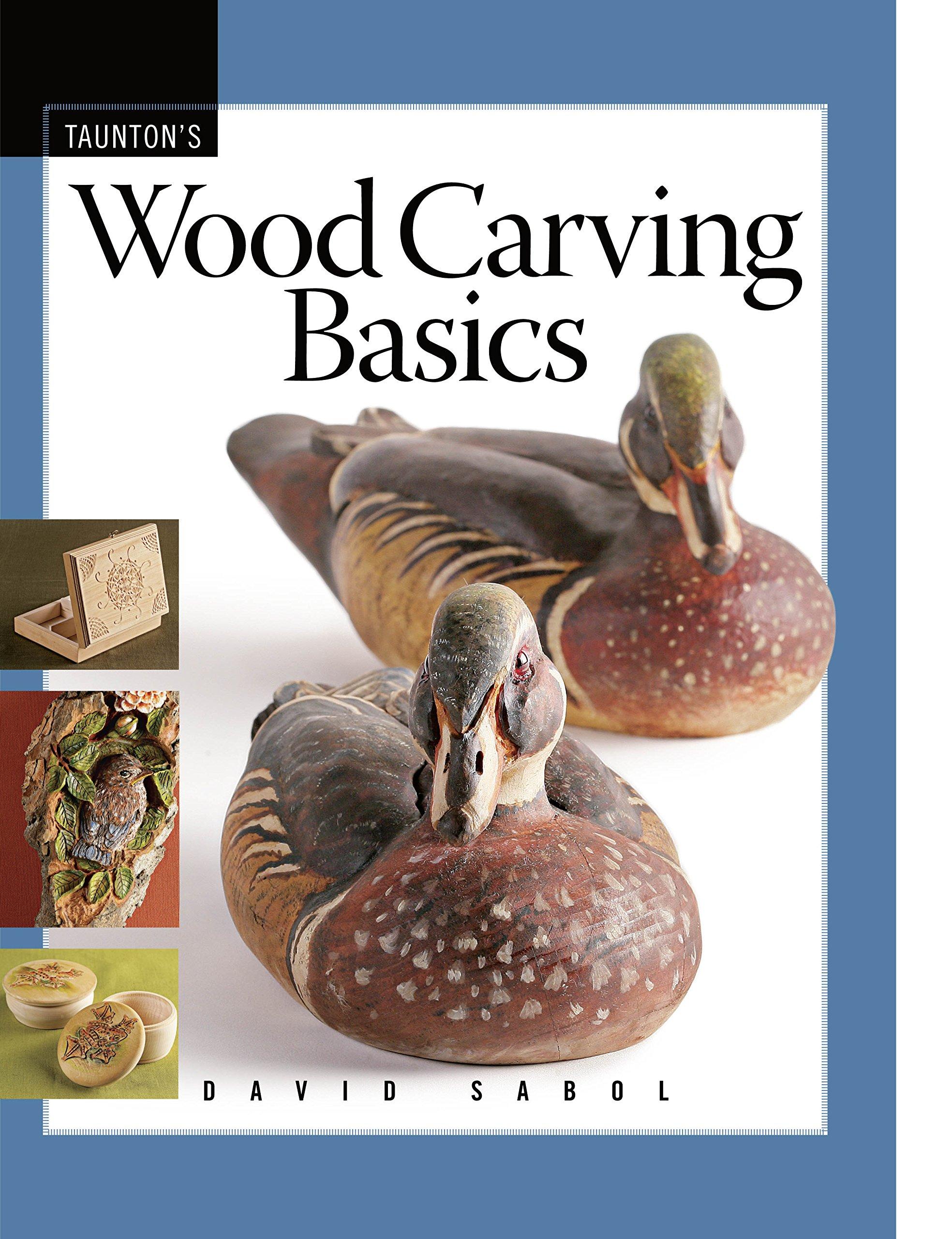 Wood Carving Basics (Fine Woodworking DVD Workshop)