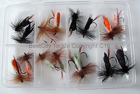 Pesca con mosca ala flotante espuma moscas 16 moscas mosca caja del señuelo trucha Pike carpas paquete #306 graves: Amazon.es: Deportes y aire libre