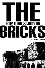 The Boy Who Stood on Bricks Kindle Edition