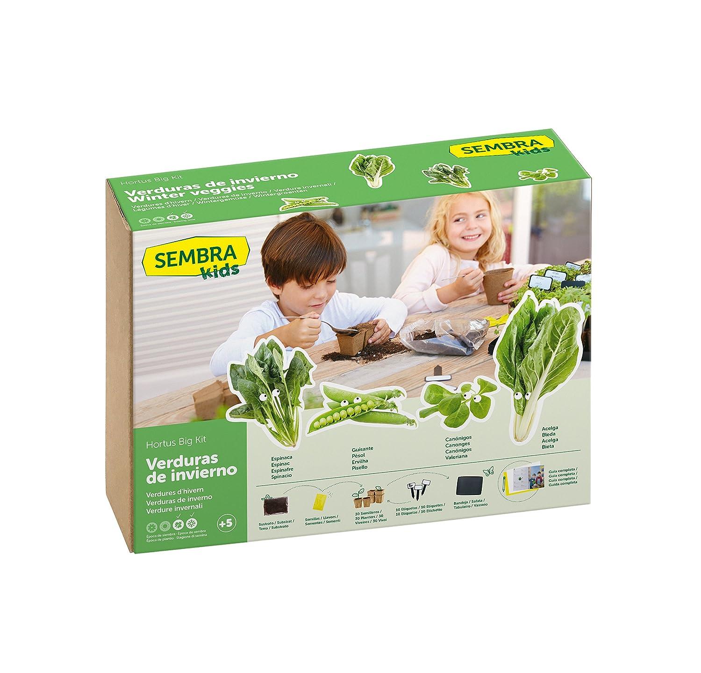 SEMBRA - juego educativo, Kit huerto Guisante: Amazon.es: Jardín