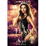 Realm Of Flames (Reborn Book 3)