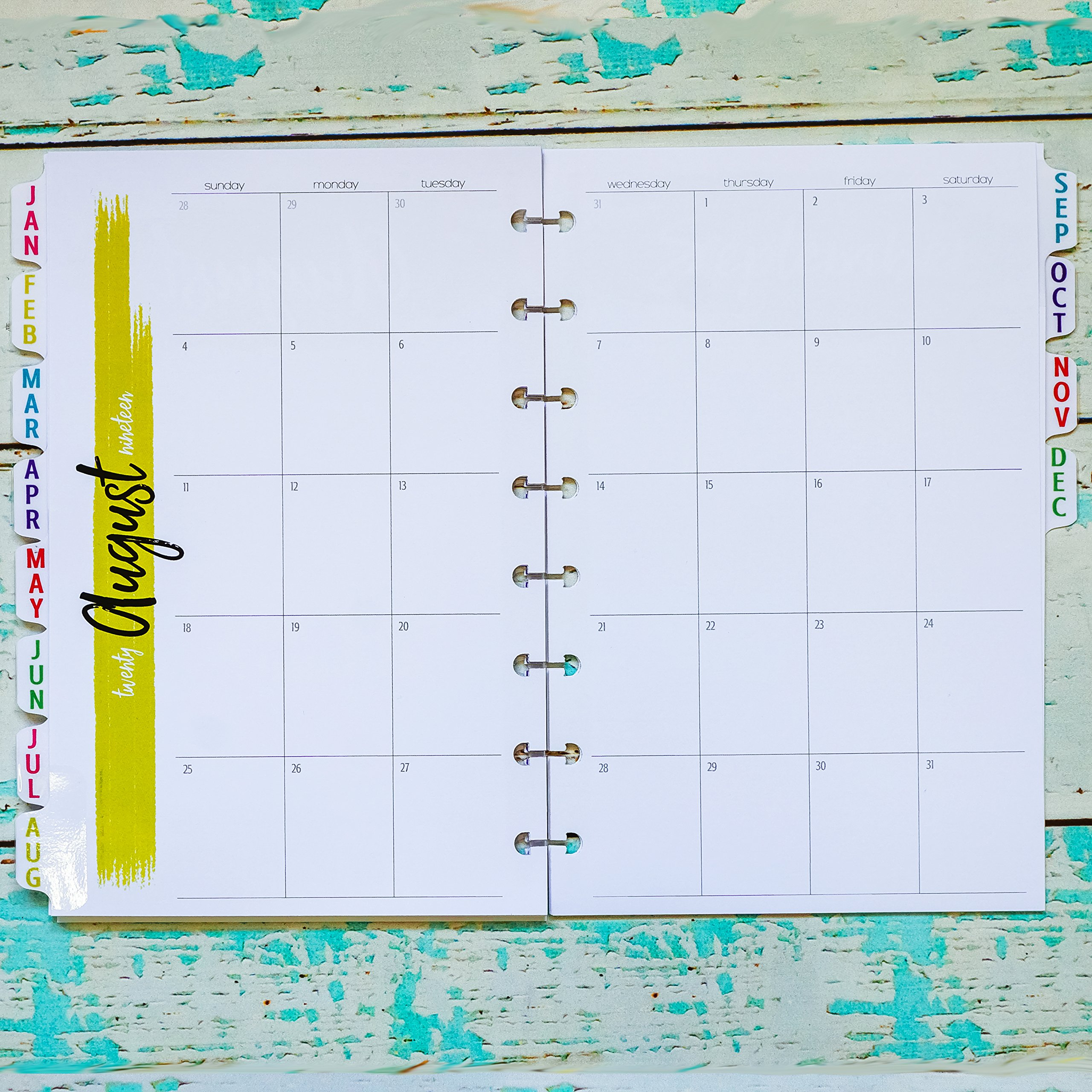 2019 Tabbed Monthly Planner Inserts for Disc-bound Junior | Sunday Start No Lines