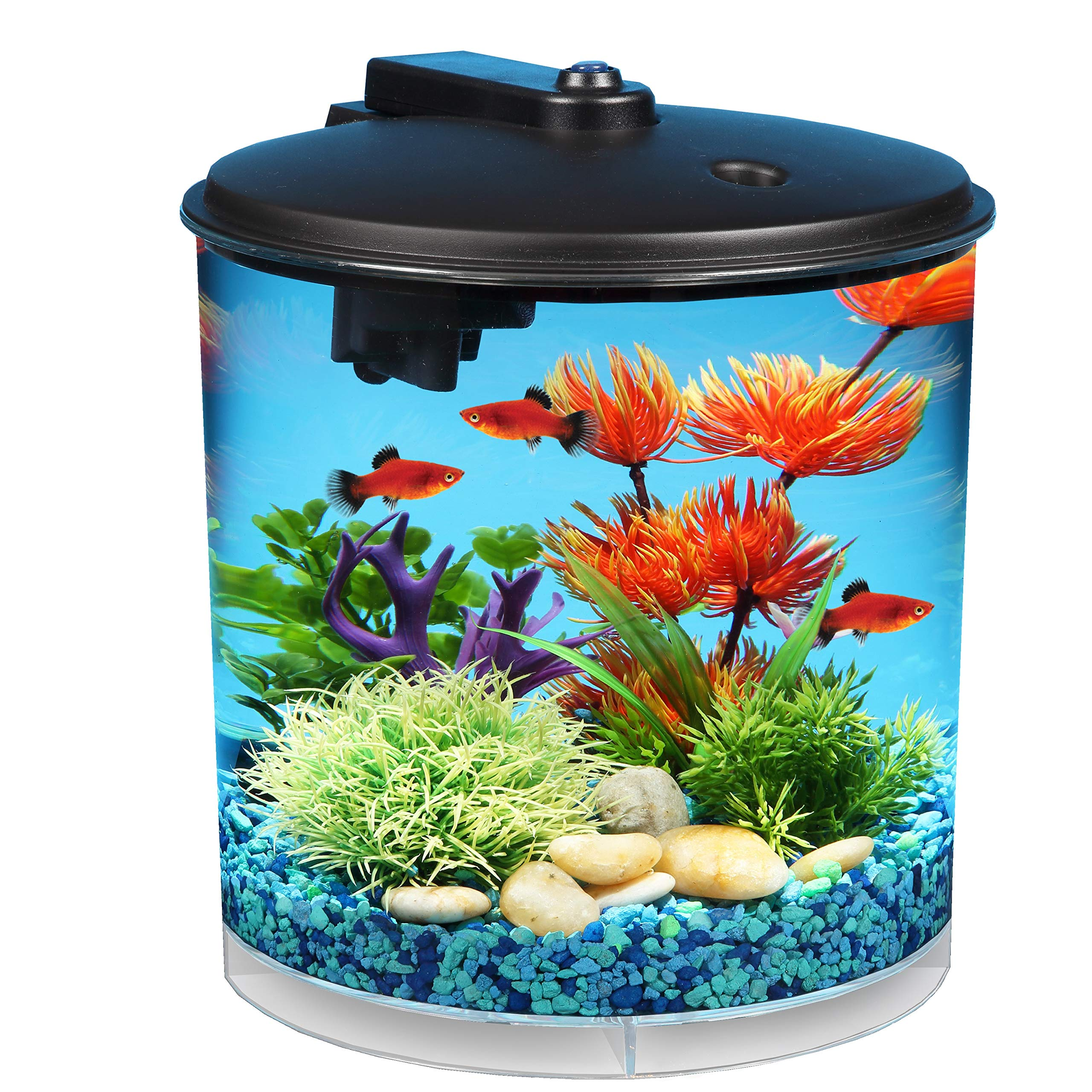 Koller Products AquaView 2-Gallon 360 Fish Tank with Power Filter and LED Lighting - AQ360-24C by Koller Products