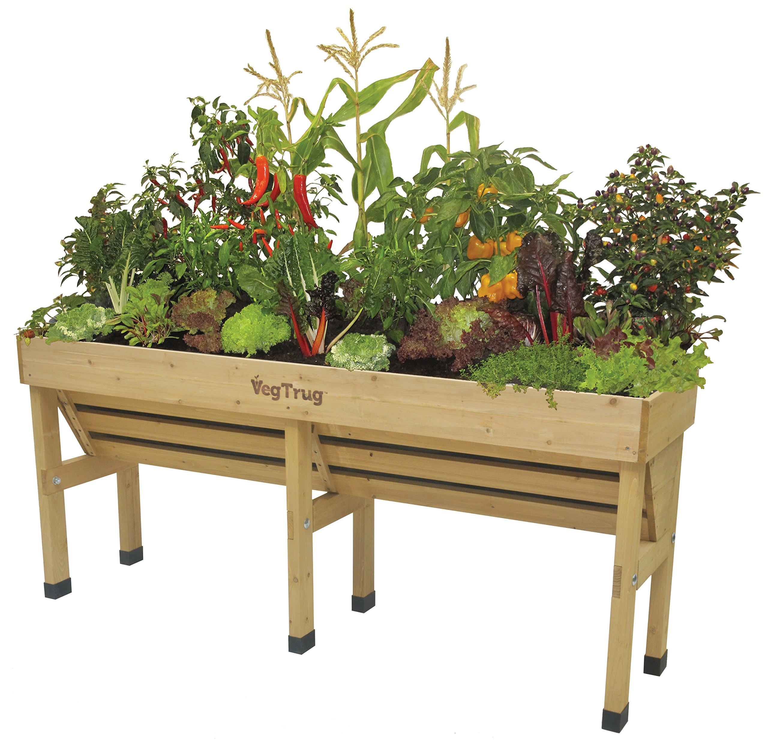 Vegtrug VTWHMDN0382 USA Wall Hugger, Medium by Veg Trug