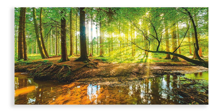Artland Qualitätsbilder I Glasbilder Wald mit Bach Sonnenaufgang Deko Glas Bilder 125 x 50 cm Landschaften Foto Grün D8SD