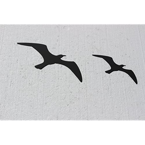 Metal Bird Wall Decor Amazon Com