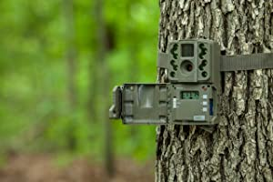 Mouting Trail Camera