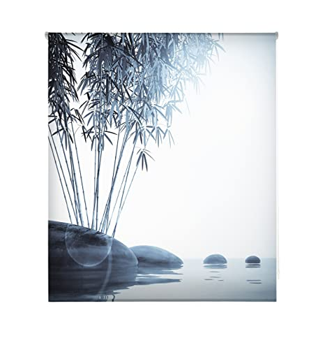 Tende A Rullo Stampate.Blindecor W Z 47466 Tenda A Rullo Trasparente Stampa Digitale