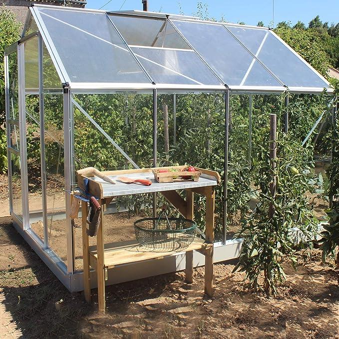 lams – Invernadero albahaca 5 m² en Aluminio. Paredes de Cristal Templado 3 mm. Techo de policarbonato 3 mm. Base Incluida.: Amazon.es: Jardín