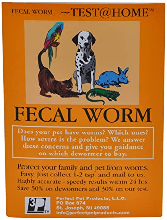 Amazoncom Fecal Worm Test For All Types Of Petsdogs Cats Birds