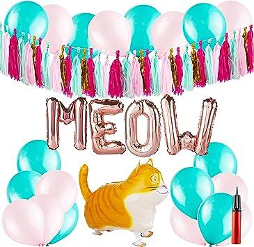 Amazon.com: Accesorios para fiesta de gato – decoración de ...