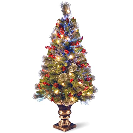 b17009cbcae7 Image Unavailable. Image not available for. Color  National Tree 4 Foot Fiber  Optic ...