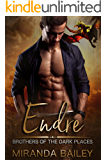 Endre: Brothers Of The Dark Places