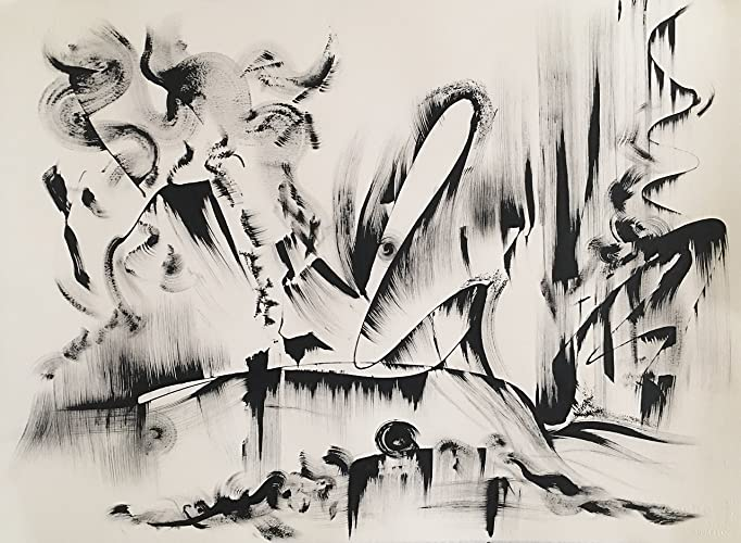 Amazon Com Black And White Abstract Drawing 9 Khrystyna