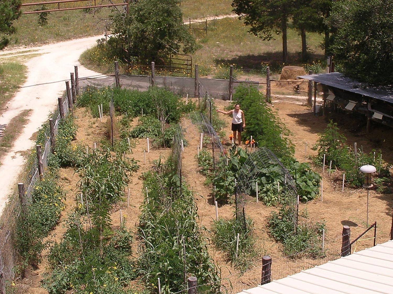amazon com food production systems for a backyard or small farm