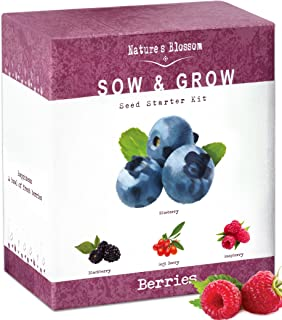 Superbe Natureu0027s Blossom Fruit Growing Kit. The Beginneru0027s Set To Grow 4 Types Of  Berries From