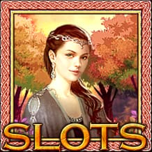 Slots:Vegas Free Casino Slot Machine Games For Kindle Fire.Best Vegas Slots Game Of 2017,Cool Slot Machines,Top Jackpot 777 Slots,Card Casino Games For Fun,Play Slots Online or Offline!