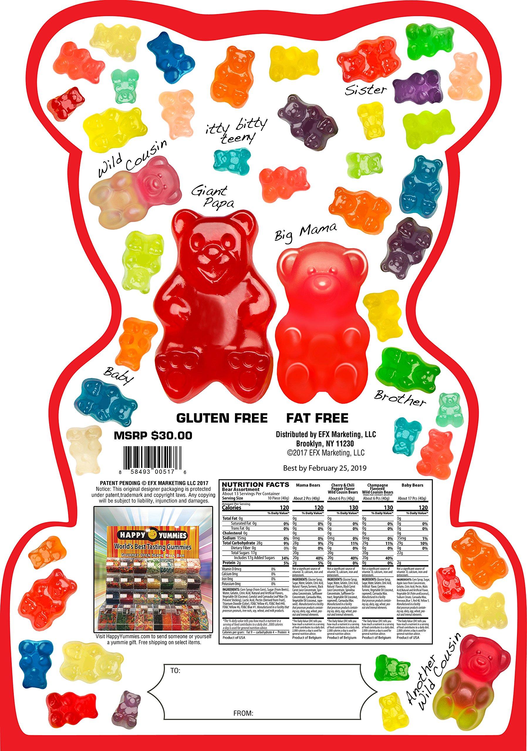 Happy Yummies Worlds Best Tasting Gourmet Gummies Super Bear Assortment 4lb. (64 ounces) by Happy Yummies