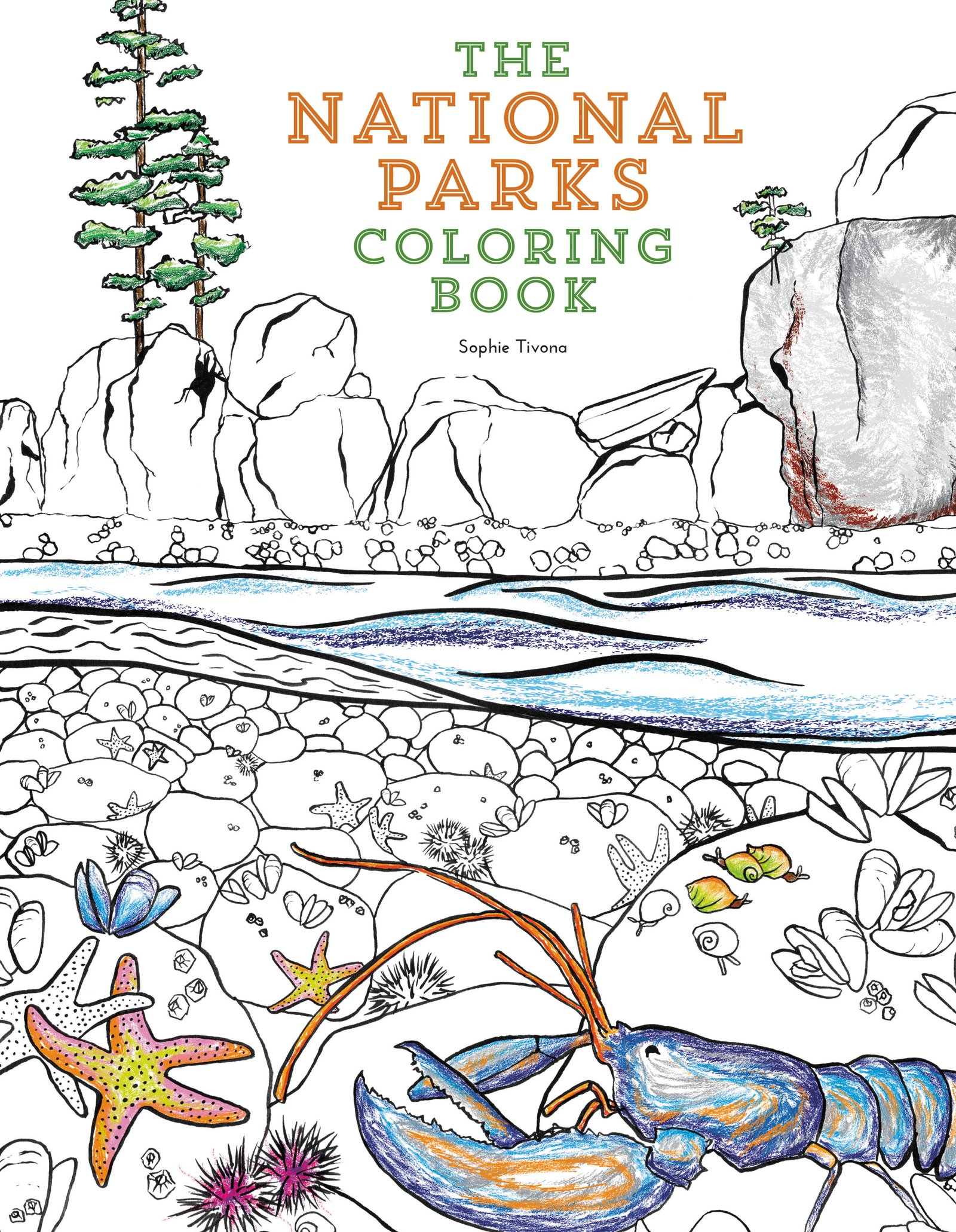 Free coloring pages national parks - Amazon Com The National Parks Coloring Book 9780062560018 Sophie Tivona Books