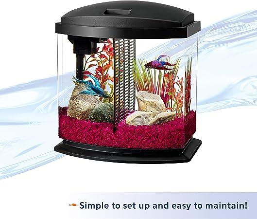 alpha-ene.co.jp Betta Bowl Aquarium Kit,Betta Starter Toy for Fish ...
