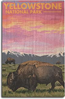 product image for Lantern Press Yellowstone National Park, Wyoming - Bison and Sunset (10x15 Wood Wall Sign, Wall Decor Ready to Hang)