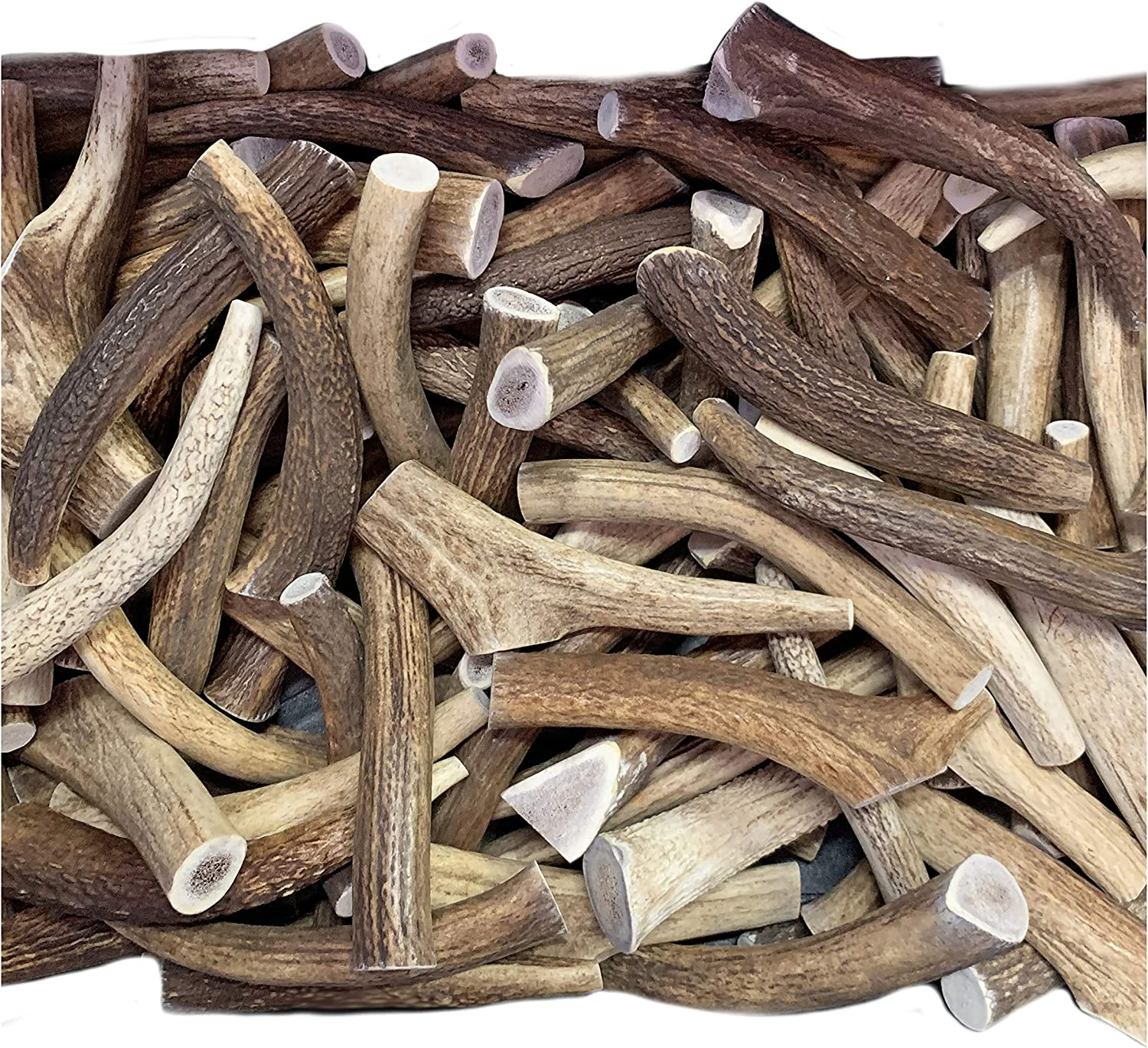 1 Each Naturally Shed Free Shipping! LARGE //THICK Premium Elk Antler Dog Chew