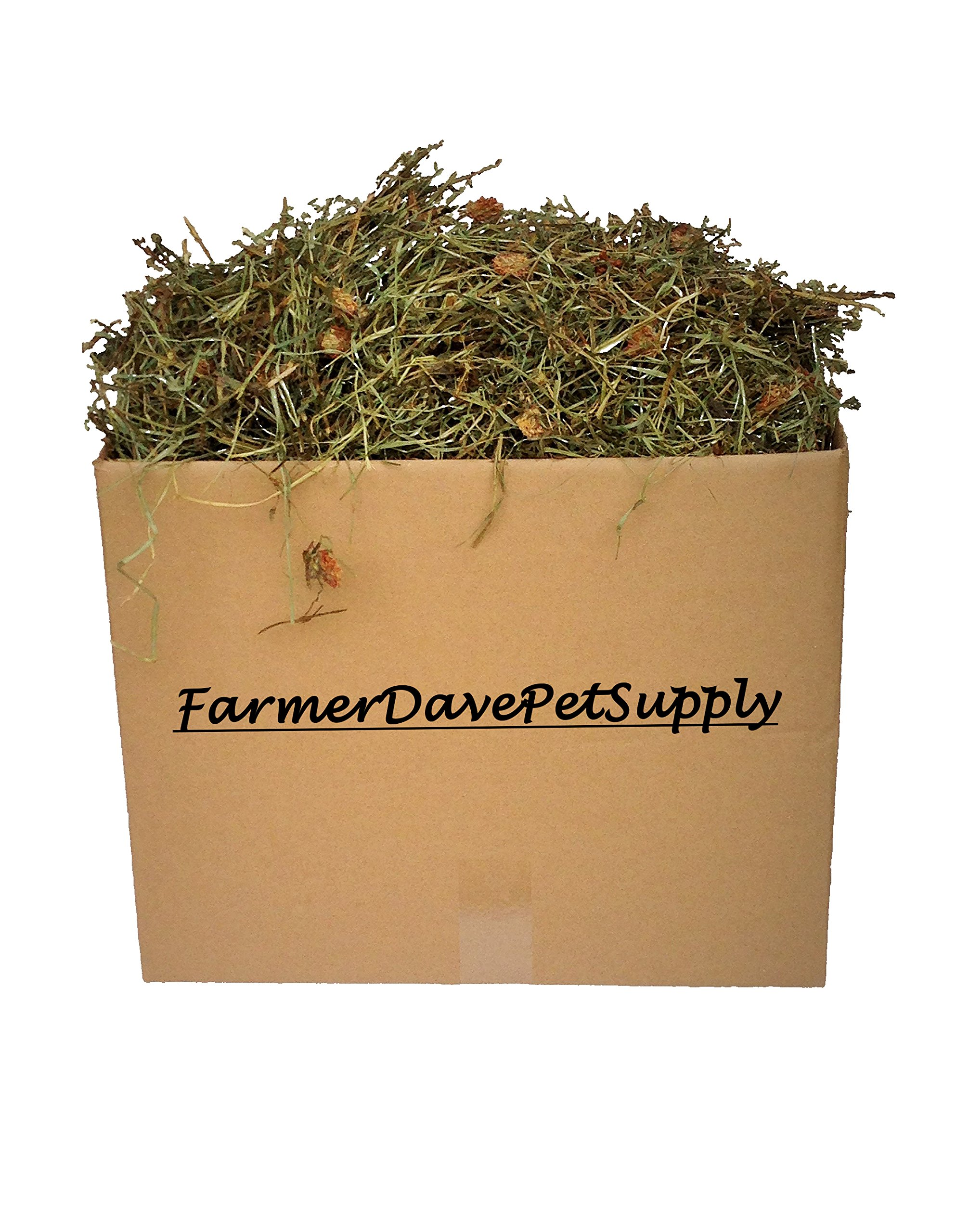 FarmerDavePetSupply 15 Lb. Premium 2nd Cut Timothy Hay With Clover, Bunny, and Small Animal Pet HAY-IN-A-BOX by FarmerDavePetSupply (Image #1)