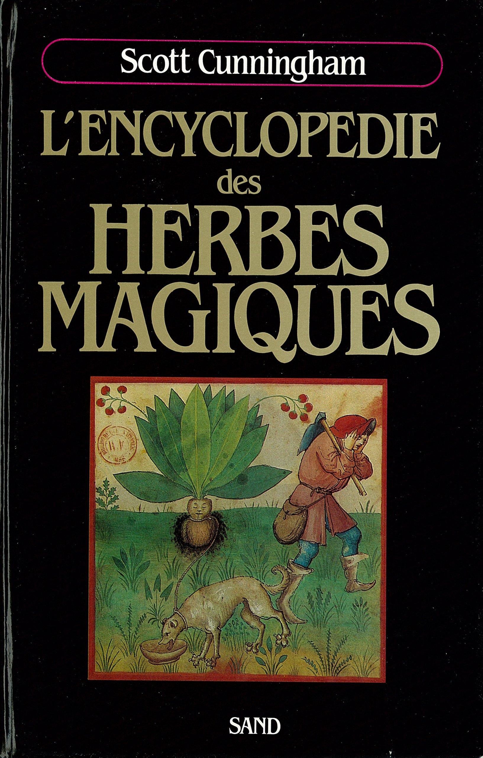 herbes magiques