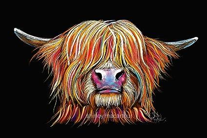 283c95301b1 HiGHLaND CoW PRINT BoX CaNVaS (WaLL ART