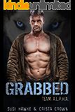 Grabbed: An MM Mpreg Romance (Team A.L.P.H.A. Book 1)