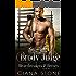 Brody Judge (Heartbreakers & Heroes Book 5)