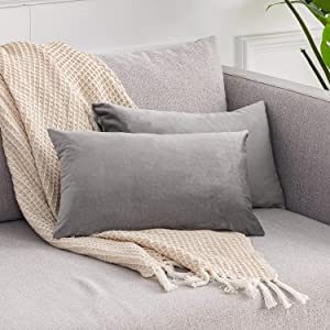 RECYCO Velvet Throw Pillow Covers, Set of 2 Square Decorative Pillow Covers 12x20 inch Soft Throw Pillows for Couch Sofa Bed Home Decor, Light Grey