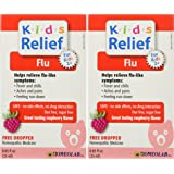 Homeopathic Medicine Kids Relief Flu, 25 ML (2pack)