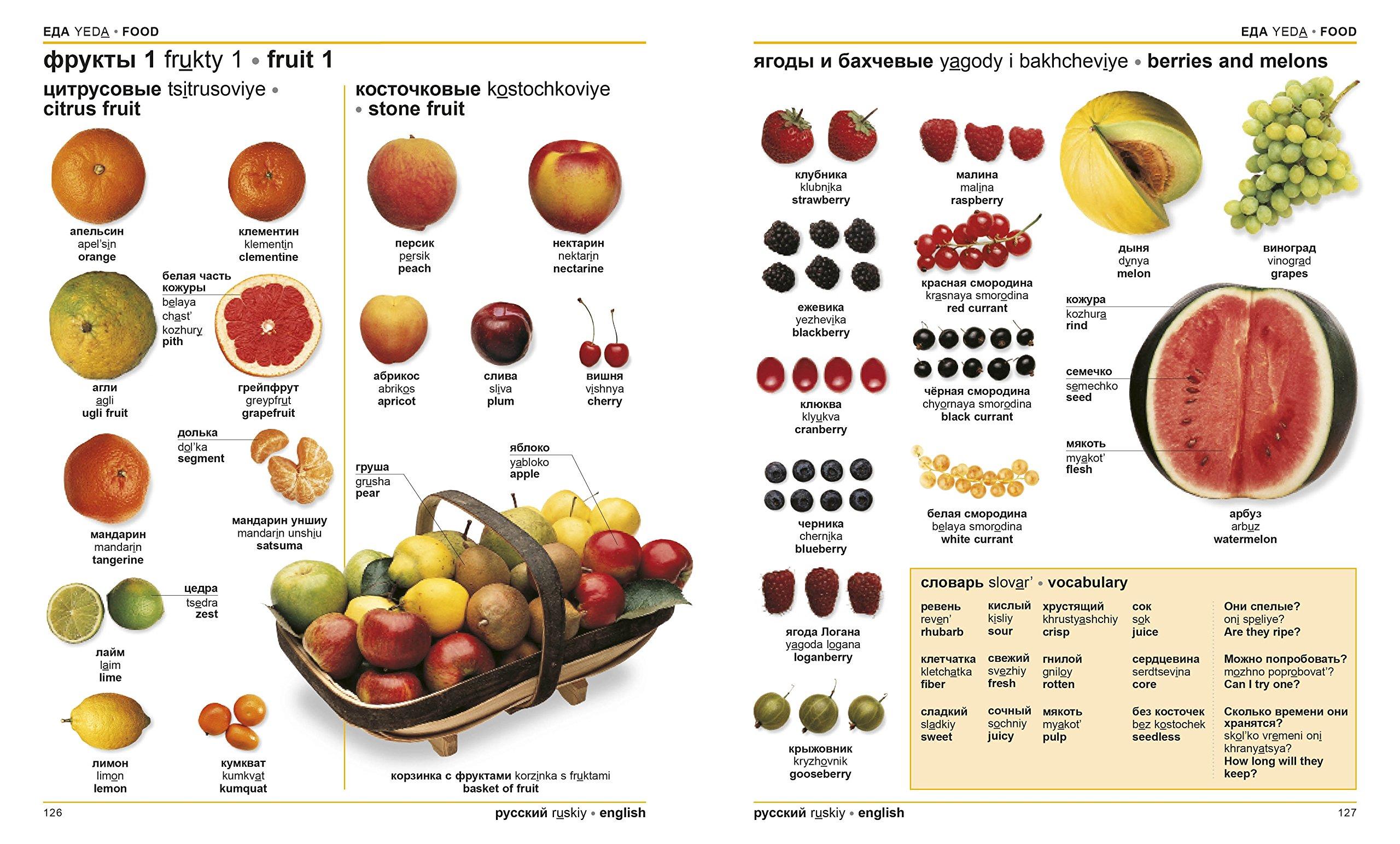 Russian-English Bilingual Visual Dictionary (DK Visual Dictionaries): DK:  9781465444158: Amazon.com: Books