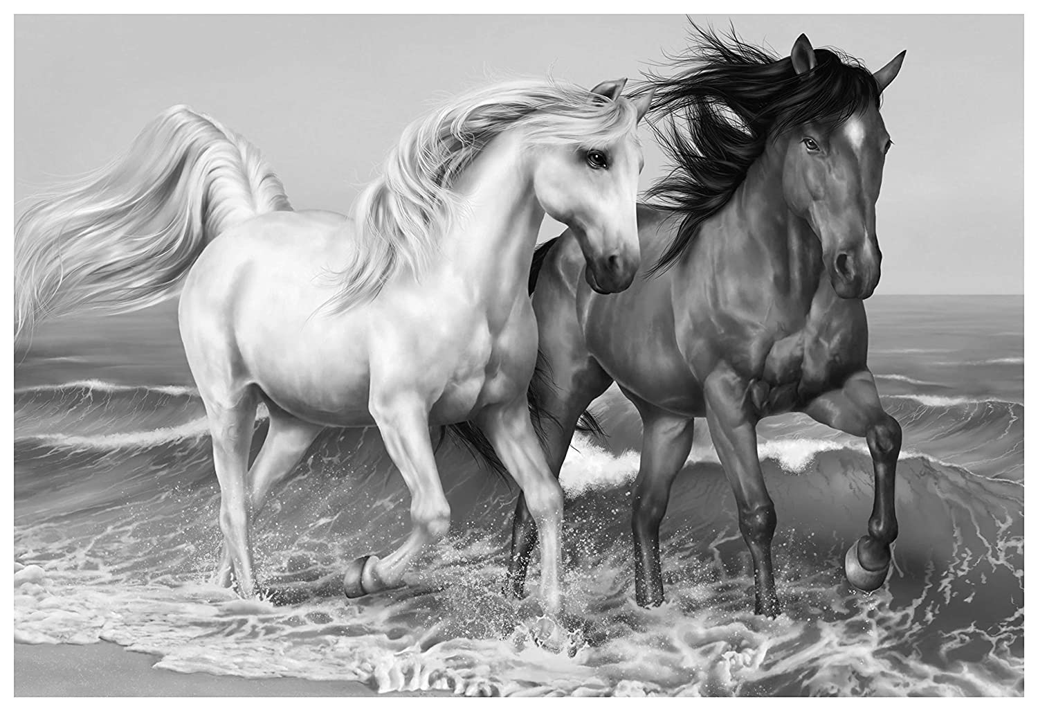 Buy rawpockets black and white horse wall posterpaper board 33 x 48 cm online at low prices in india amazon in