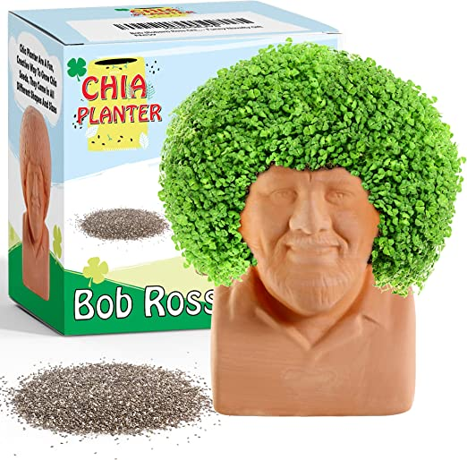 Amazon Com Na Bob Robert Ross Chia Decorative Pottery Planter 4 5 X 4 5 X 3 5 Small Chia Seeds Included Plant And Grow Hair Funny Novelty Gift Home Kitchen