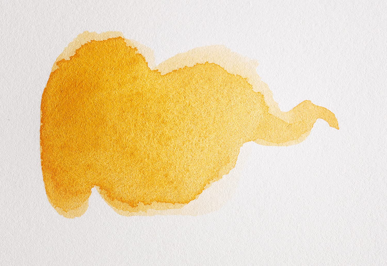 Clairefontaine 96356C Rolle Aquarellpapier (Fontaine, 1,5 m x 10 m, 300 g, satiniert, heiß gepresst, 100% Baumwolle, professionelle Qualität, ideal für Künstler) weiß B06XJ7HNMG  | Großer Räumungsverkauf