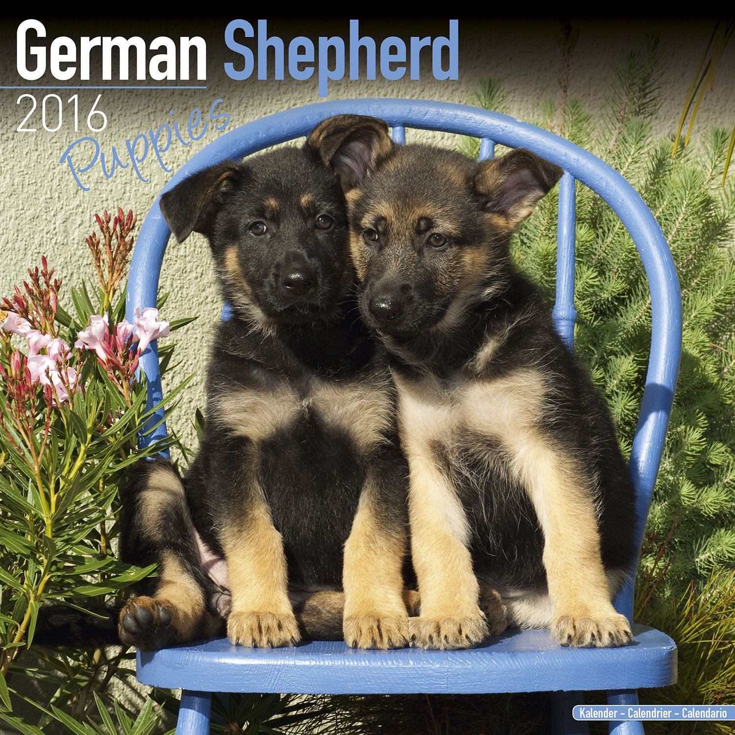 German Shepherd Puppies Calendar - Breed Specific German Shepherd Puppies Calendar - 2016 Wall calendars - Dog Calendars - Monthly Wall Calendar by Avonside pdf epub