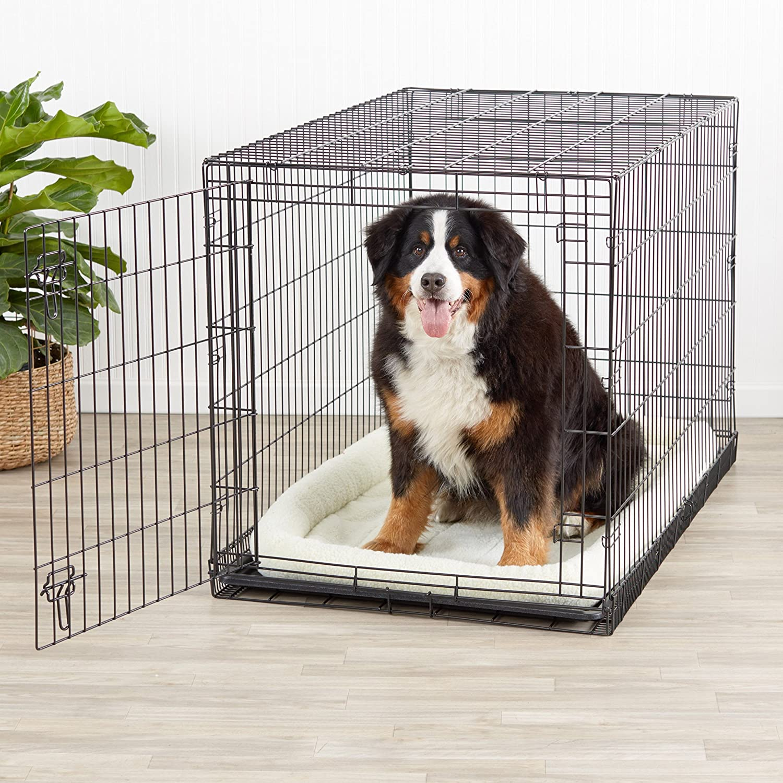AmazonBasics - Jaula plegable de metal para mascota (una puerta, 122 cm largo): Amazon.es: Productos para mascotas