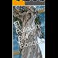 El Paladín Del Bosque (Cuentos Verkysto nº 2) (Spanish Edition)
