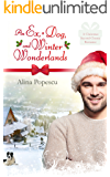 An Ex, A Dog, and Winter Wonderlands: A Gay Christmas Romance