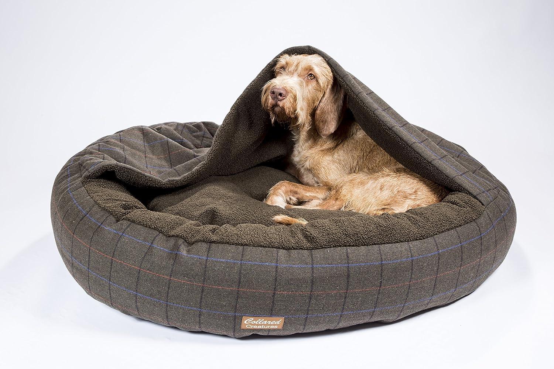 Collared Creatures Comfort Cocoon cama para perro, cama para perro, extra grande, 1100 mm, color verde: Amazon.es: Productos para mascotas