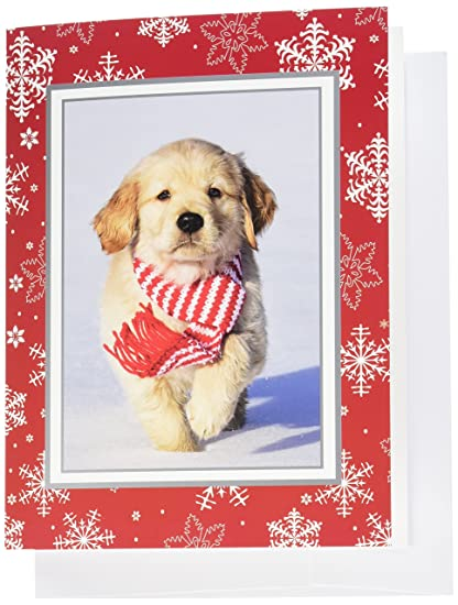 fuzzy puppy golden retriever christmas cards