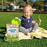 Healthy Times Organic Whole Grain Mixed Grain