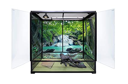 Amazon Com Carolina Custom Cages Terrarium Extra Tall Large