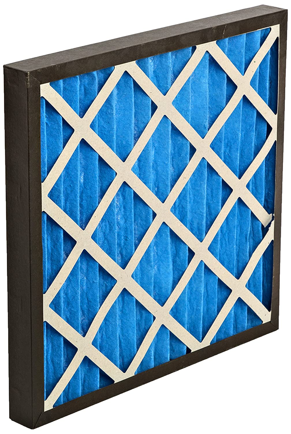 GVS Filter Technology G4P.20.20.2.SUA001.010 G4 Pleated Panel Filter, Blue/White (Pack of 10)