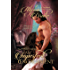 An Imperfect Engagement (Wiltshire Chronicles Book 2)