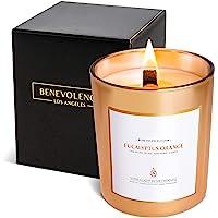 Premium Eucalyptus & Orange Fall Scented Candles, Fall Candles for Home, Autumn Candles, Eucalyptus Candle, All Natural…
