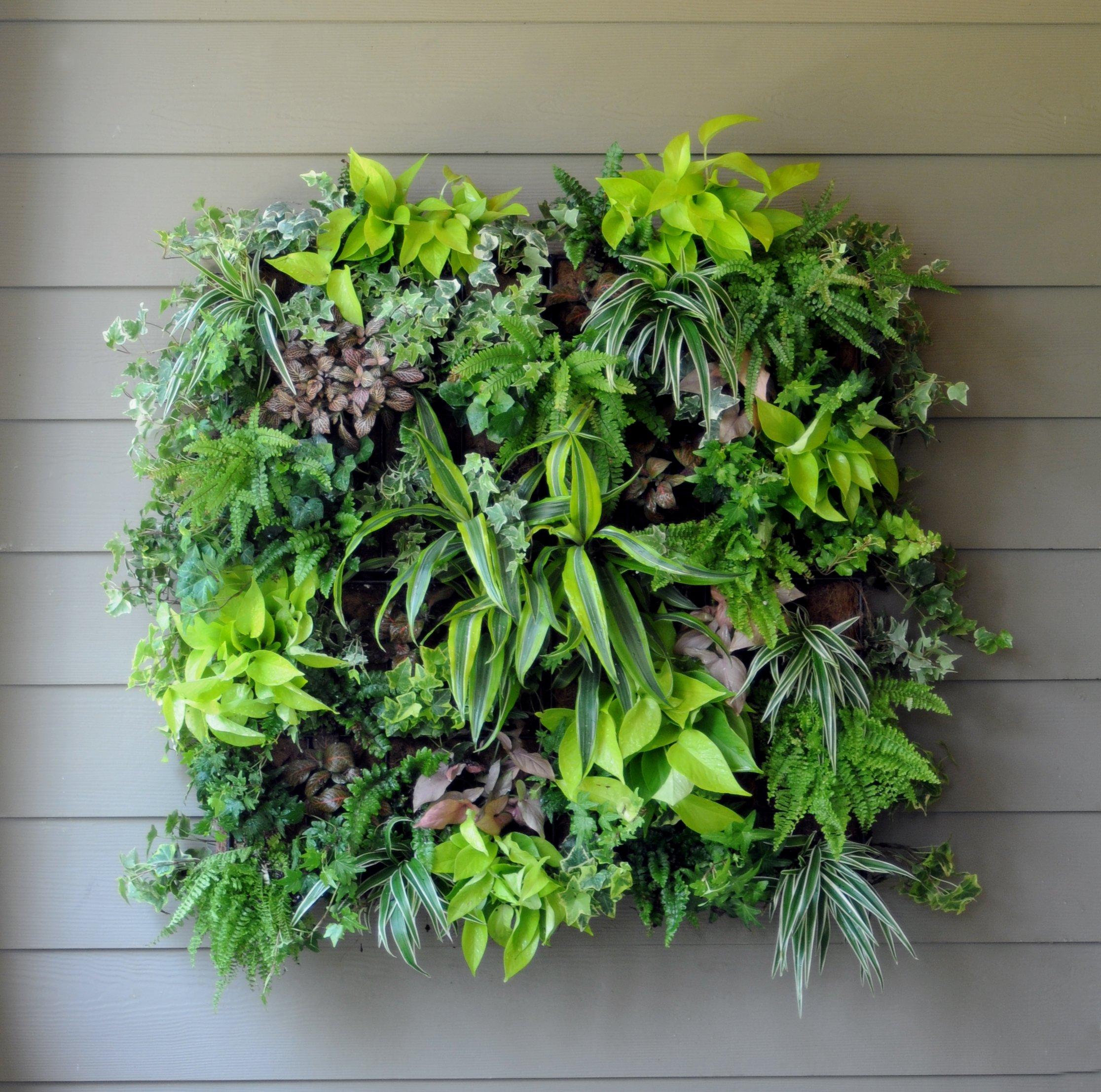 Vertical Garden Planter with Hangs, 9 Pocket Hanging Indoor / Outdoor Wall Garden